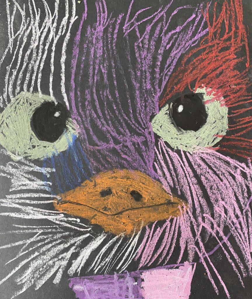 PandaKrijtStruisvogel